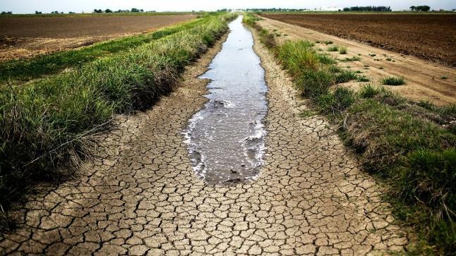 المتحدث باسم وزارة الرى: الملء الأول لسد لنهضة لم يؤثر على حصة مصر المائية ولدينا مخاوف من الجفاف