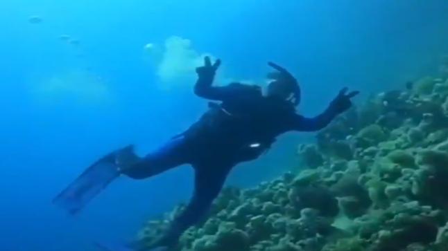 """غواص سعودي يلتقط مناظر خلابة للشعاب المرجانية بمشروع """"أمالا"""""""